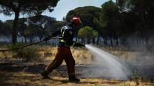 Las labores de extinción y lucha contra el incendio de Doñana, en imágenes