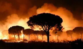 Las imágenes del incendio que amenazan con arrasar Doñana