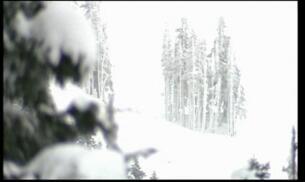 Cuatro muertos en 24 horas por dos avalanchas