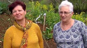 Las abuelas de la marihuana