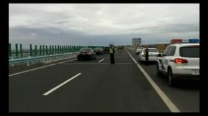 Dos camellos desorientados paralizan el tráfico en una carretera de China