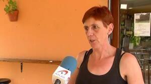 Un plaga de moscas invade una localidad de Girona