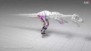 Desvelan otro gran fallo de «Jurassic Park»: el Tiranosaurio rex no podía correr