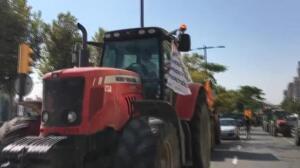 Tractorada en defensa de la libertad en las calles de Lleida