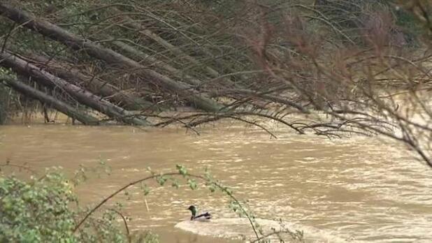 Alerta por la crecida de los ríos en el País Vasco